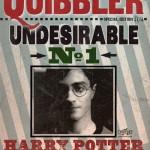 Chronique cinéma : Harry Potter et les reliques de la mort seconde partie