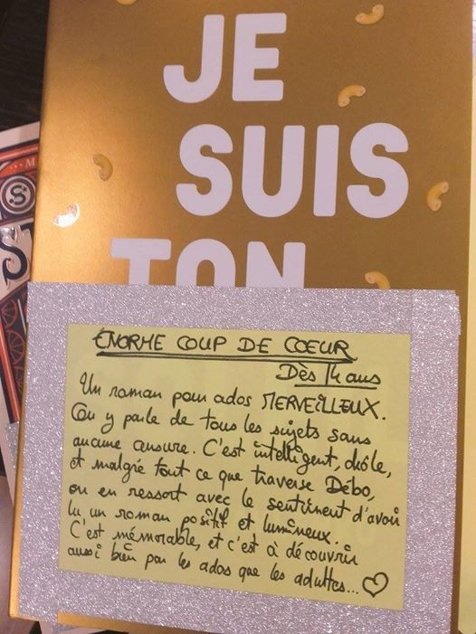 Mon coup de cœur, à la Librairie Royaumes (Paris 13ème). La couverture brille de mille feux !