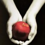 Chronique : Twilight – Tome 1 – Fascination