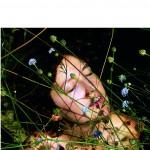 Chronique : La vie rêvée des plantes